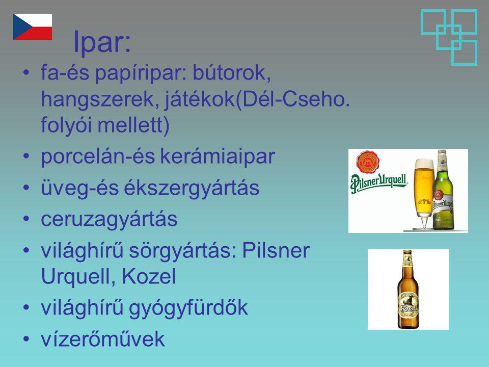 Ipar: fa-és papíripar: bútorok, hangszerek, játékok(Dél-Cseho. folyói mellett) porcelán-és kerámiaipar.