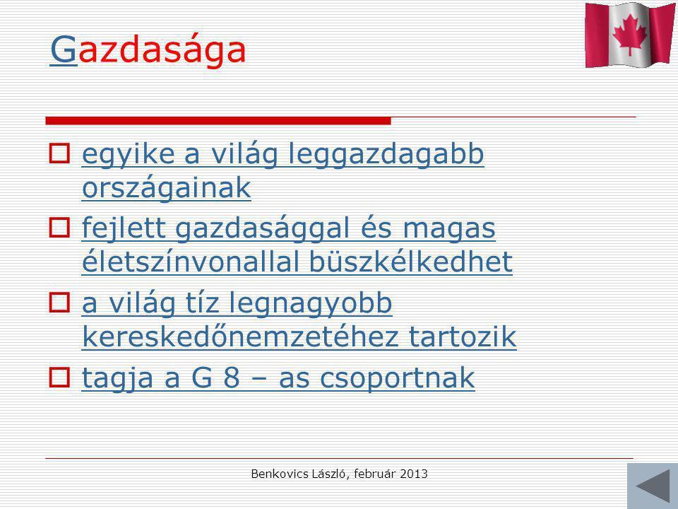 Benkovics László, február 2013