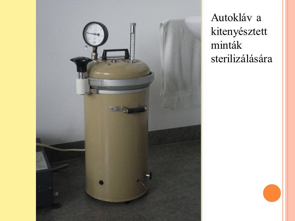 Autokláv a kitenyésztett minták sterilizálására