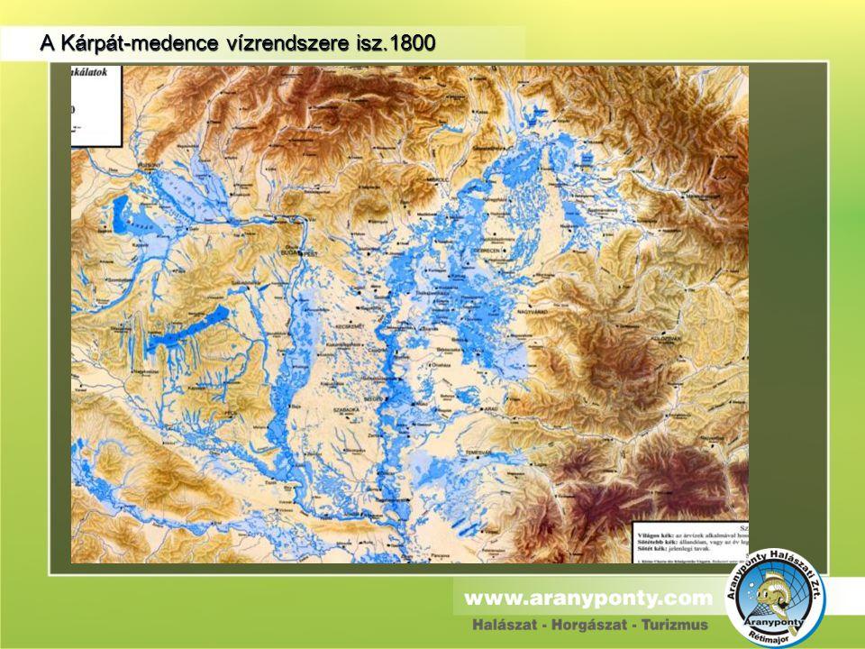 A Kárpát-medence vízrendszere isz.1800