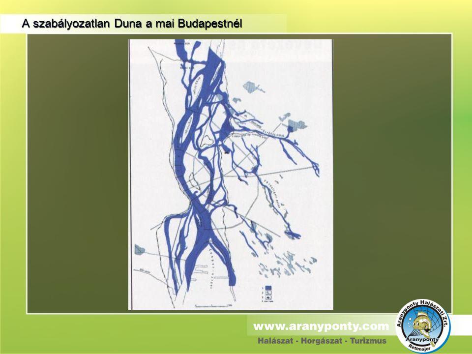 A szabályozatlan Duna a mai Budapestnél