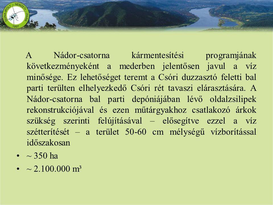 A Nádor-csatorna kármentesítési programjának következményeként a mederben jelentősen javul a víz minősége. Ez lehetőséget teremt a Csóri duzzasztó feletti bal parti terülten elhelyezkedő Csóri rét tavaszi elárasztására. A Nádor-csatorna bal parti depóniájában lévő oldalzsilipek rekonstrukciójával és ezen műtárgyakhoz csatlakozó árkok szükség szerinti felújításával – elősegítve ezzel a víz szétterítését – a terület 50-60 cm mélységű vízborítással időszakosan