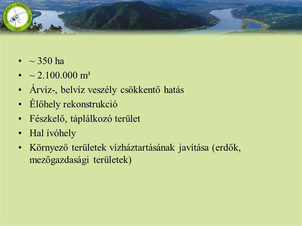 ~ 350 ha ~ 2.100.000 m³. Árvíz-, belvíz veszély csökkentő hatás. Élőhely rekonstrukció. Fészkelő, táplálkozó terület.