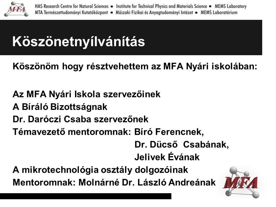 Köszönetnyílvánítás Köszönöm hogy résztvehettem az MFA Nyári iskolában: Az MFA Nyári Iskola szervezőinek.