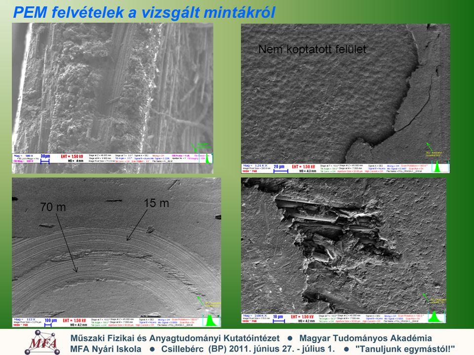 PEM felvételek a vizsgált mintákról