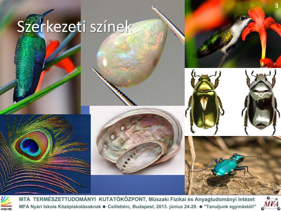 Szerkezeti színek