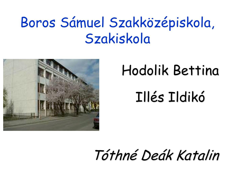 Boros Sámuel Szakközépiskola, Szakiskola