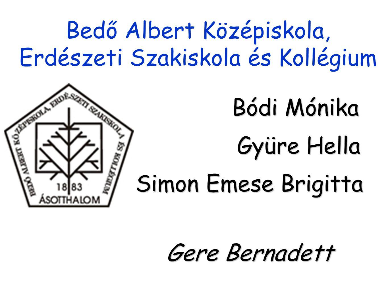 Bedő Albert Középiskola, Erdészeti Szakiskola és Kollégium