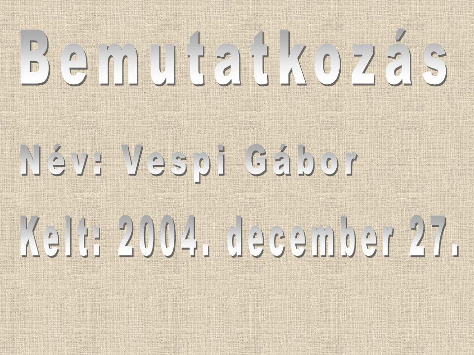 Bemutatkozás Név: Vespi Gábor Kelt: 2004. december 27.