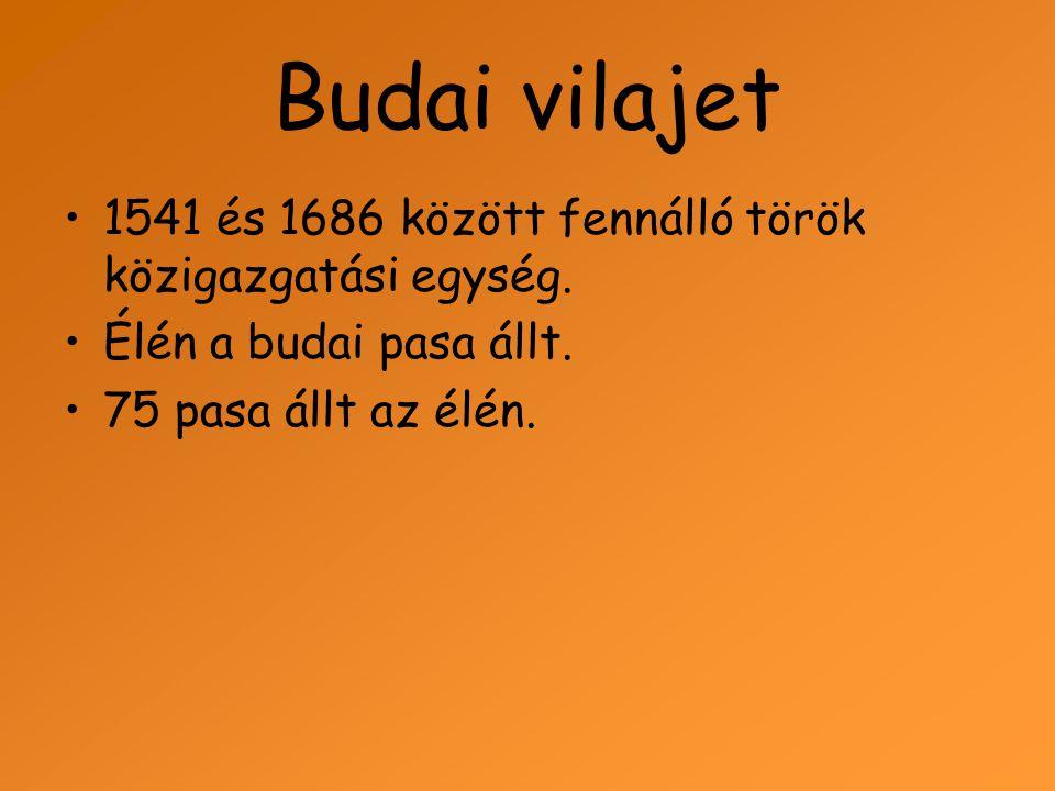 Budai vilajet 1541 és 1686 között fennálló török közigazgatási egység.