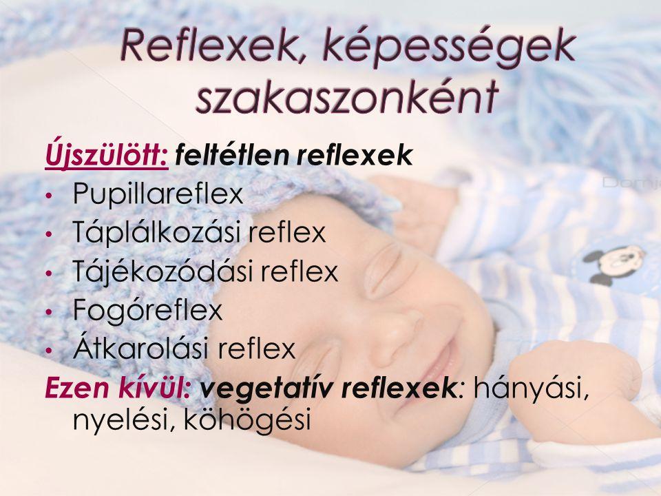 Reflexek, képességek szakaszonként