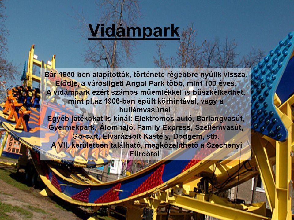 Vidámpark Bár 1950-ben alapították, története régebbre nyúlik vissza.