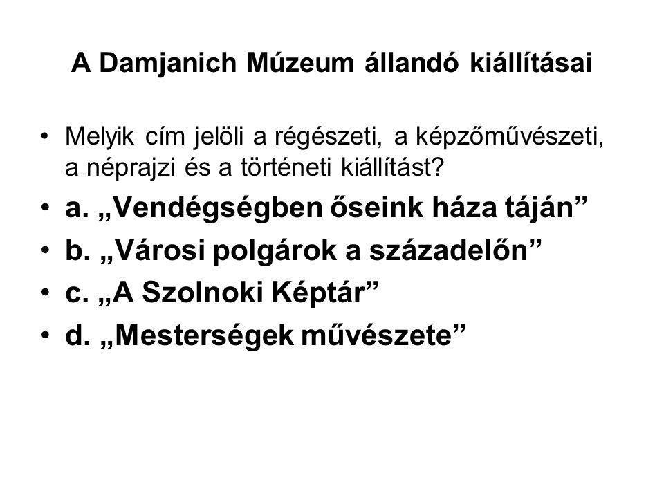 A Damjanich Múzeum állandó kiállításai
