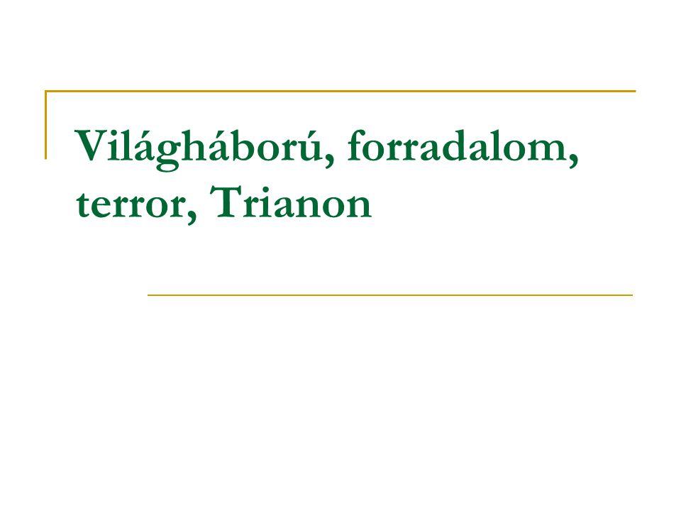Világháború, forradalom, terror, Trianon