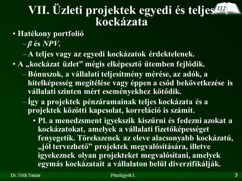 VII. Üzleti projektek egyedi és teljes kockázata