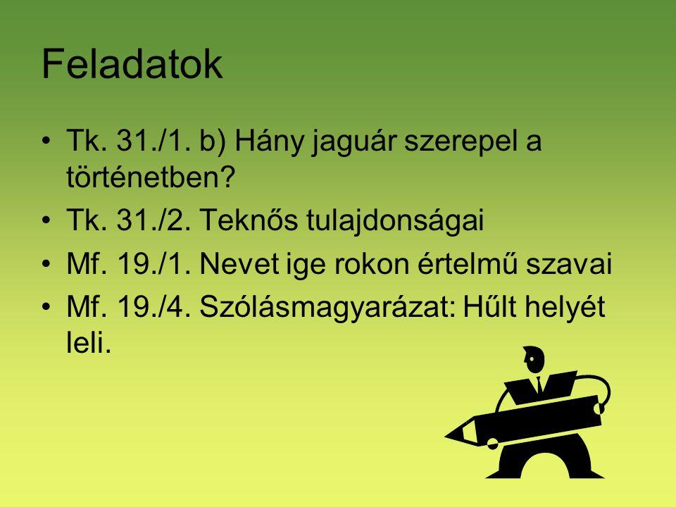 Feladatok Tk. 31./1. b) Hány jaguár szerepel a történetben