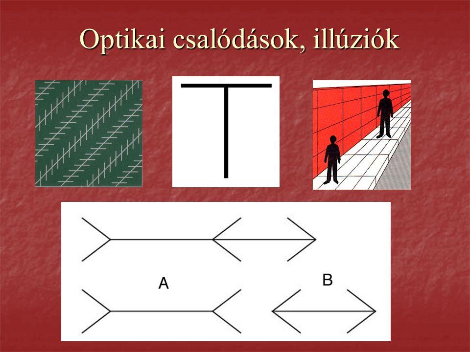 Optikai csalódások, illúziók