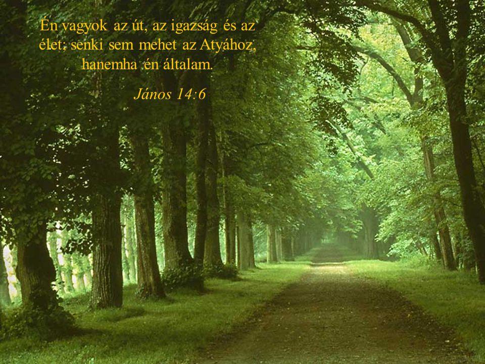 Én vagyok az út, az igazság és az élet; senki sem mehet az Atyához, hanemha én általam.
