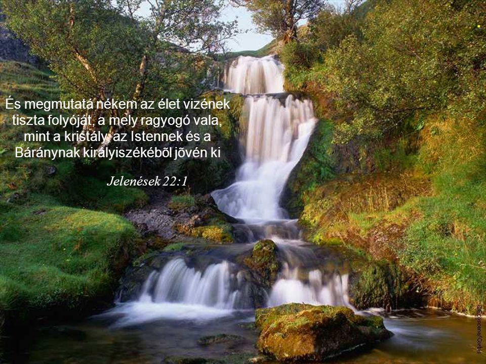 . És megmutatá nékem az élet vizének tiszta folyóját, a mely ragyogó vala, mint a kristály, az Istennek és a Báránynak királyiszékébõl jõvén ki.