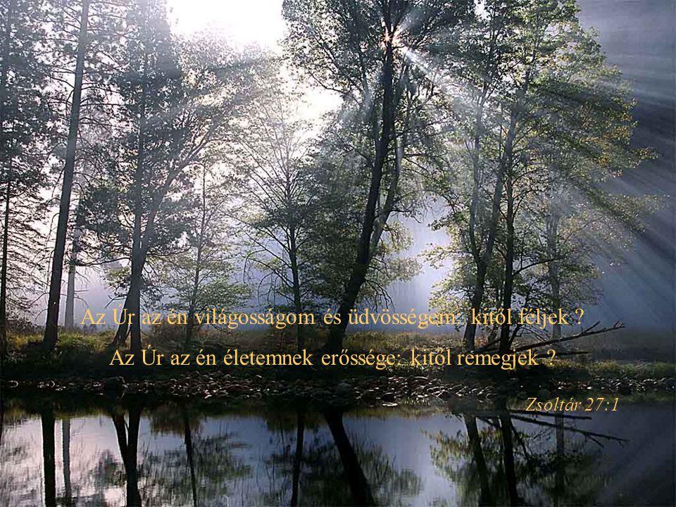 Az Úr az én világosságom és üdvösségem: kitől féljek