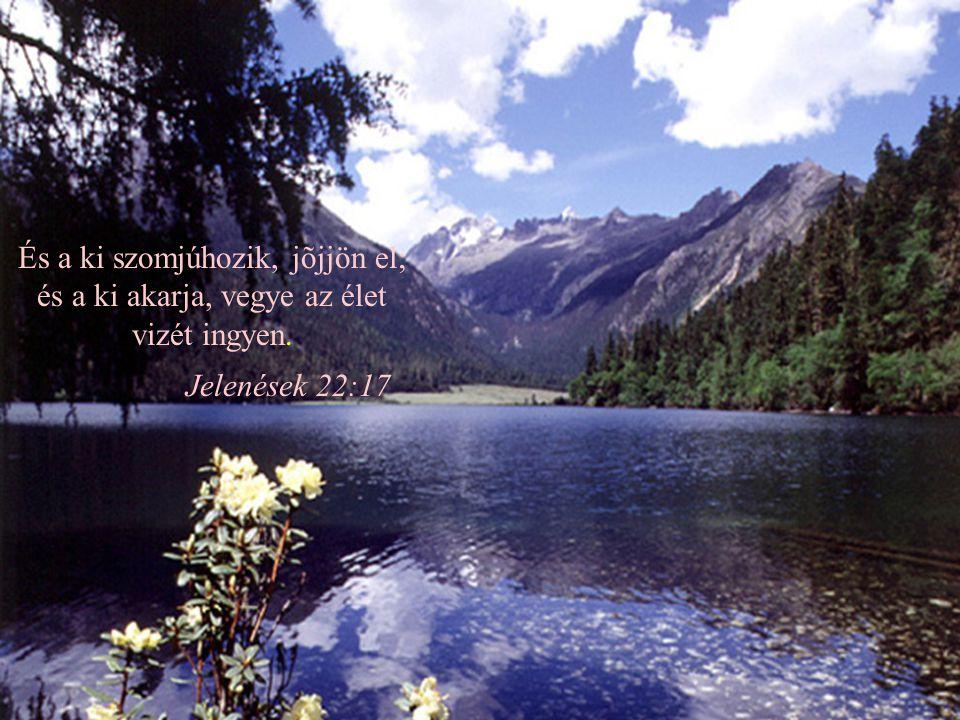 És a ki szomjúhozik, jõjjön el; és a ki akarja, vegye az élet vizét ingyen.