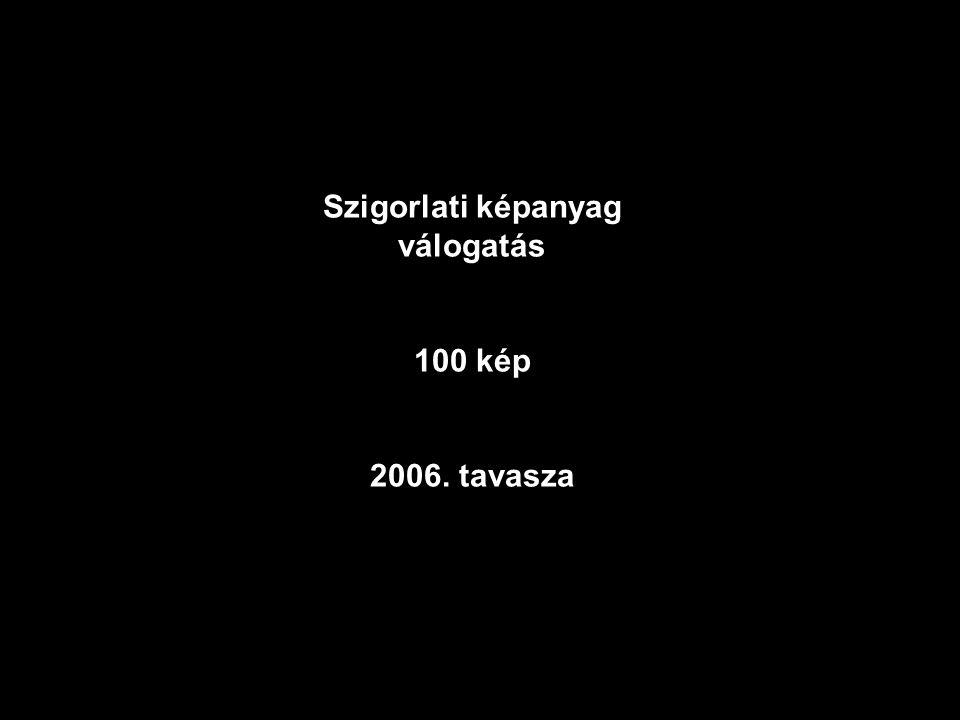 Szigorlati képanyag válogatás 100 kép 2006. tavasza