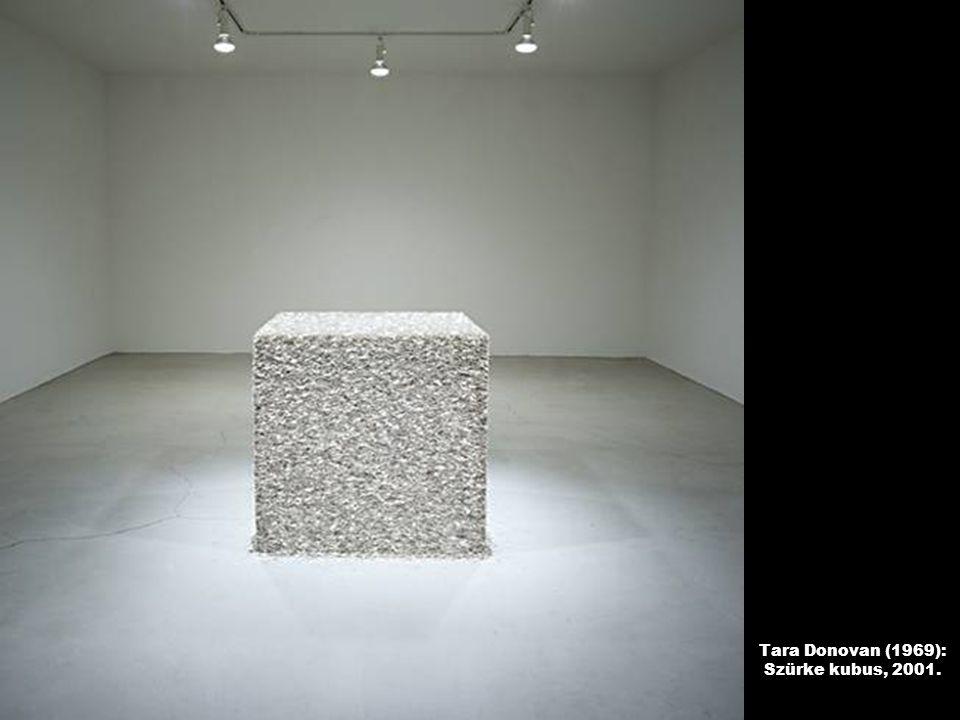 Tara Donovan (1969): Szürke kubus, 2001.