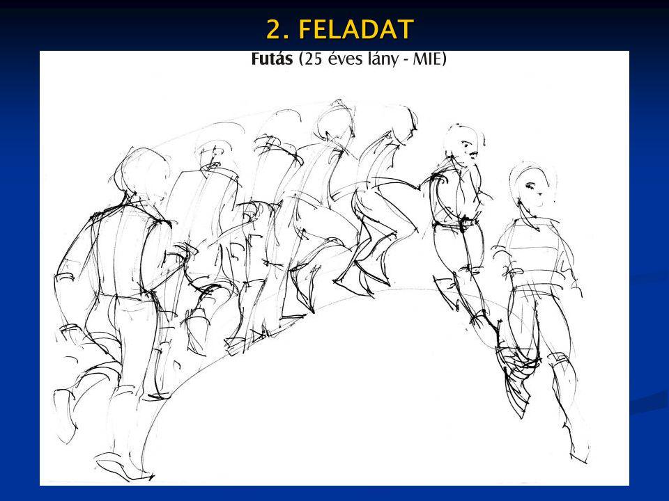 2. FELADAT