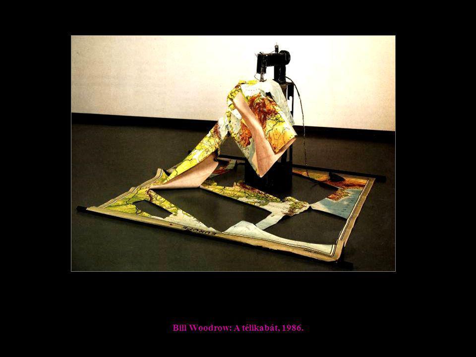 Bill Woodrow: A télikabát, 1986.