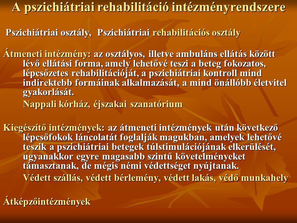 A pszichiátriai rehabilitáció intézményrendszere