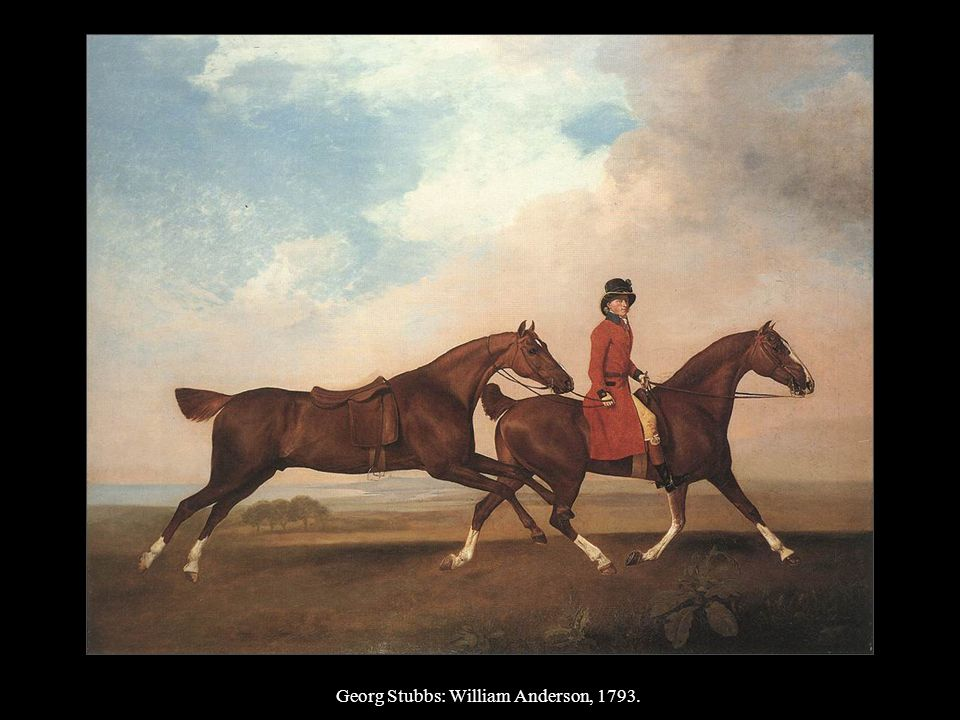 Georg Stubbs: William Anderson, 1793.