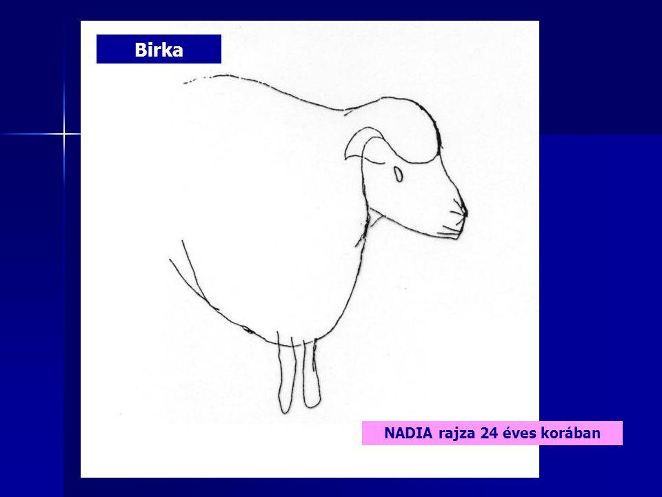NADIA rajza 24 éves korában