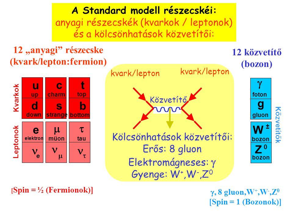 A Standard modell részecskéi: (kvark/lepton:fermion)