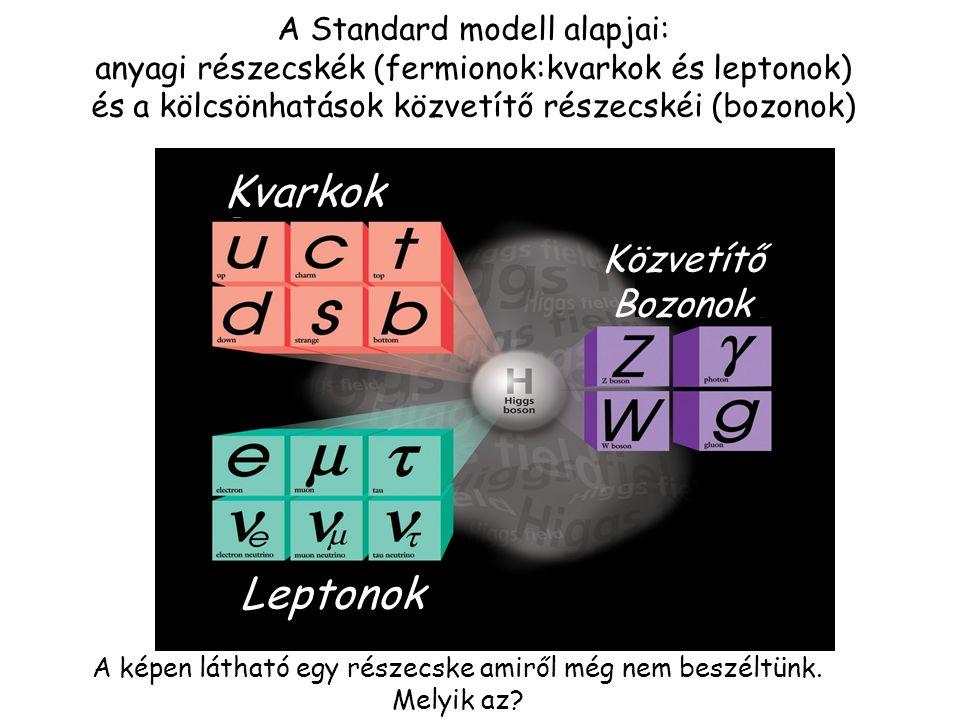 Kvarkok Leptonok Közvetítő Bozonok A Standard modell alapjai: