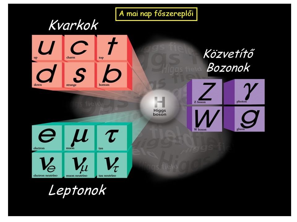 Kvarkok Leptonok Közvetítő Bozonok A mai nap főszereplői