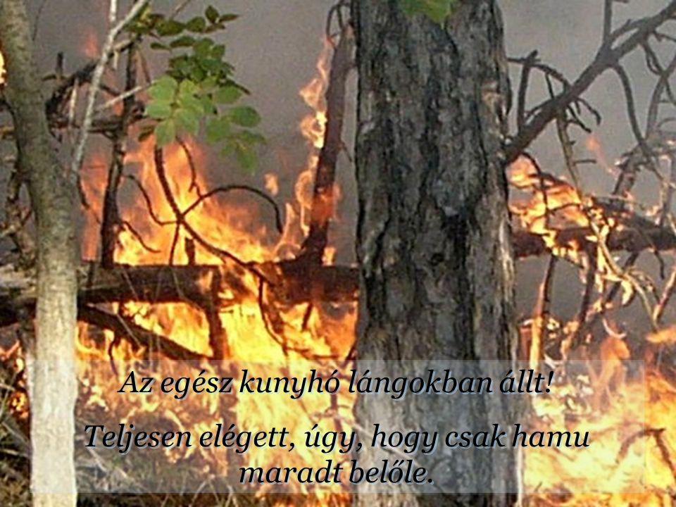 Az egész kunyhó lángokban állt!