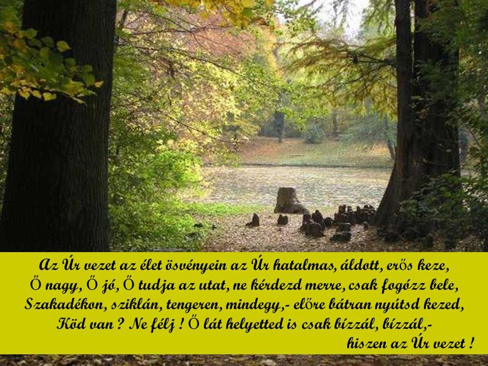 Az Úr vezet az élet ösvényein az Úr hatalmas, áldott, erős keze,