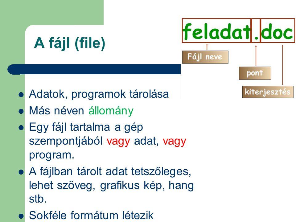 A fájl (file) Adatok, programok tárolása Más néven állomány