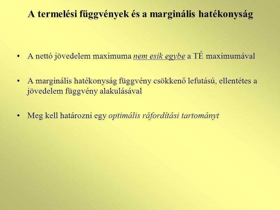 A termelési függvények és a marginális hatékonyság