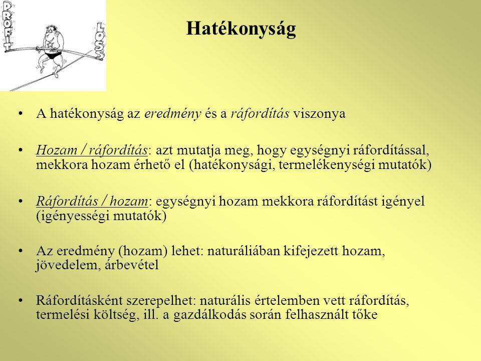Hatékonyság A hatékonyság az eredmény és a ráfordítás viszonya