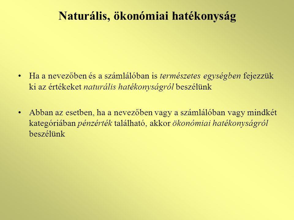 Naturális, ökonómiai hatékonyság