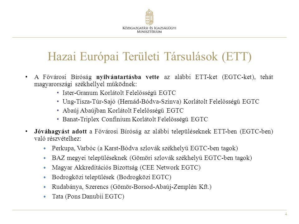 Hazai Európai Területi Társulások (ETT)