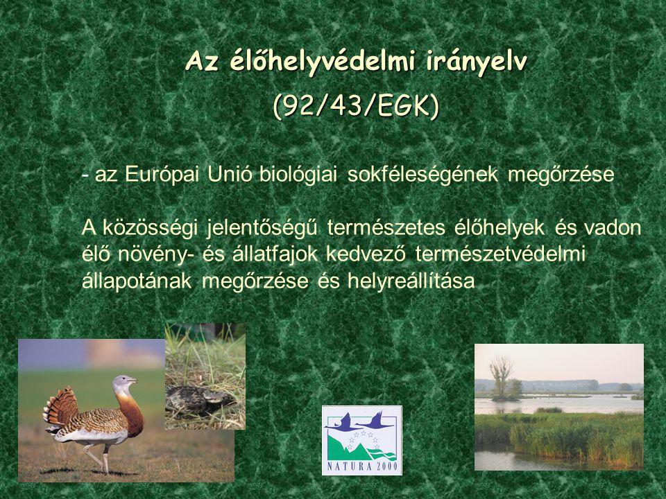 Az élőhelyvédelmi irányelv (92/43/EGK)