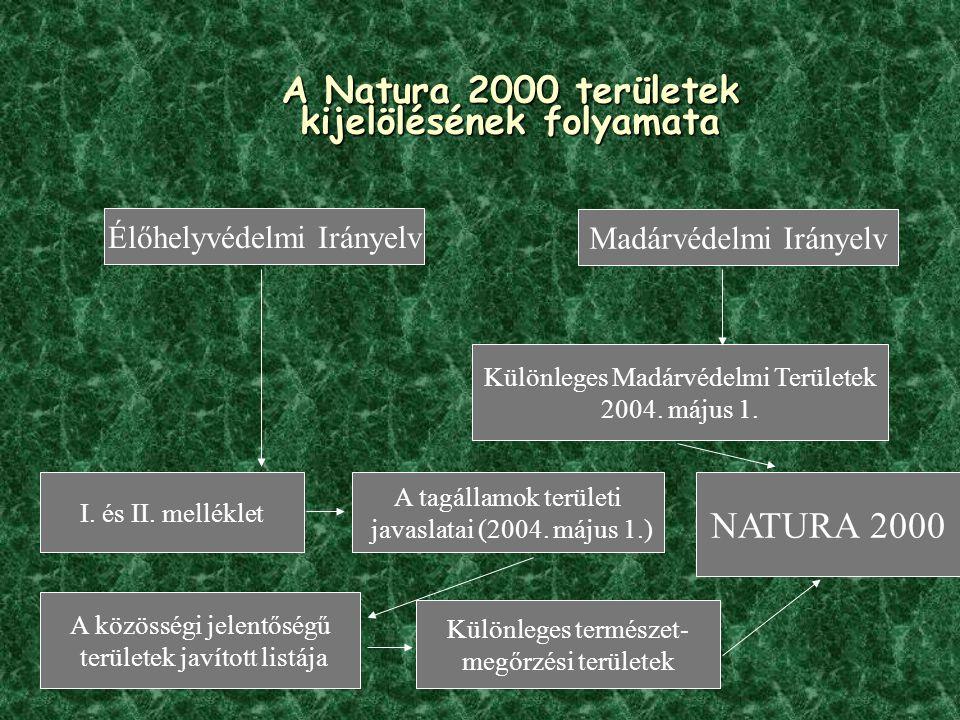 A Natura 2000 területek kijelölésének folyamata