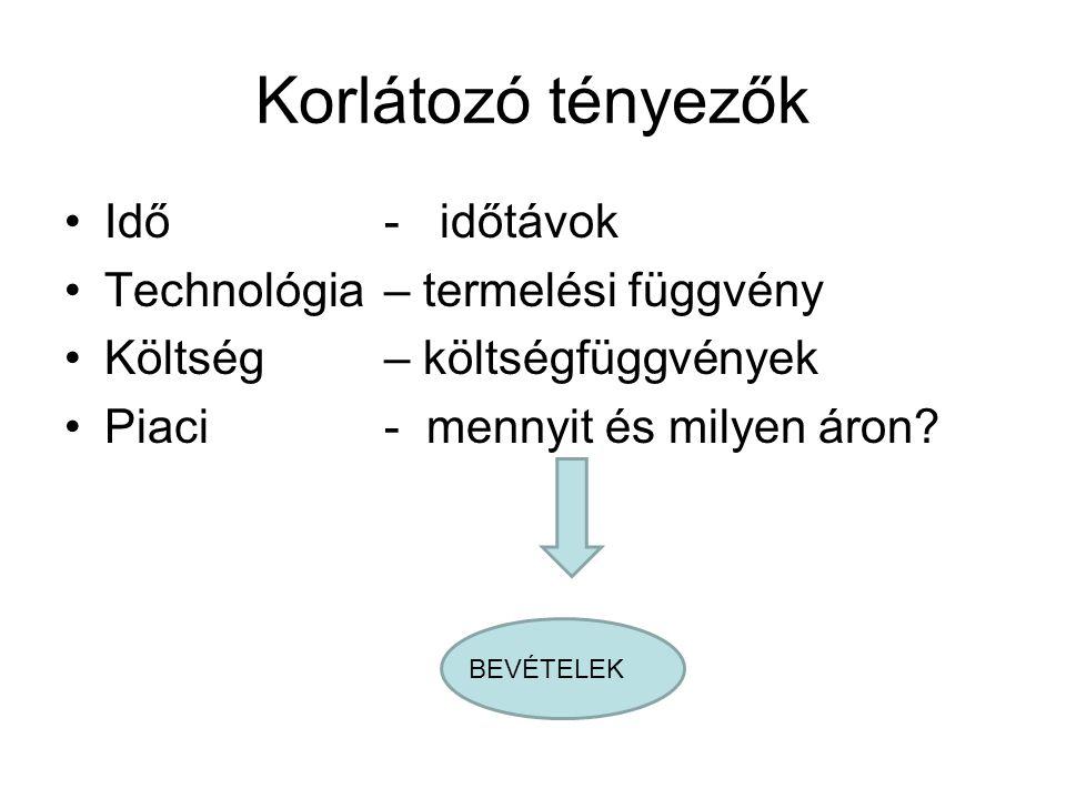 Korlátozó tényezők Idő - időtávok Technológia – termelési függvény