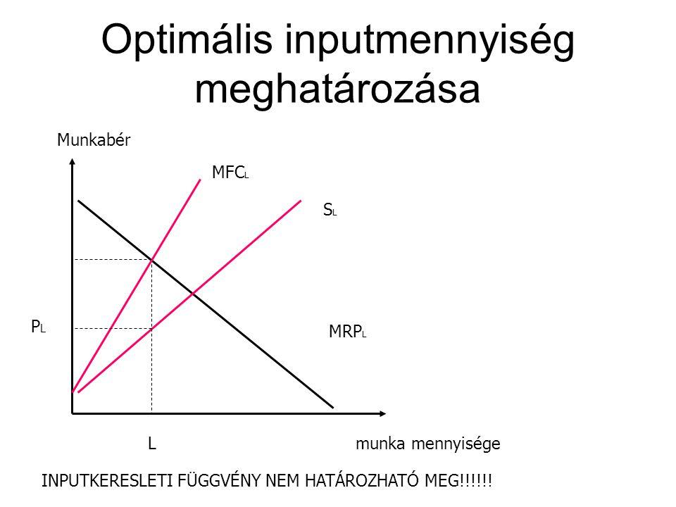 Optimális inputmennyiség meghatározása