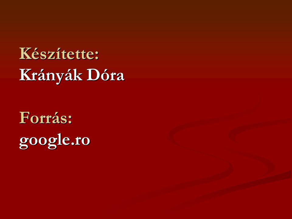 Készítette: Krányák Dóra Forrás: google.ro