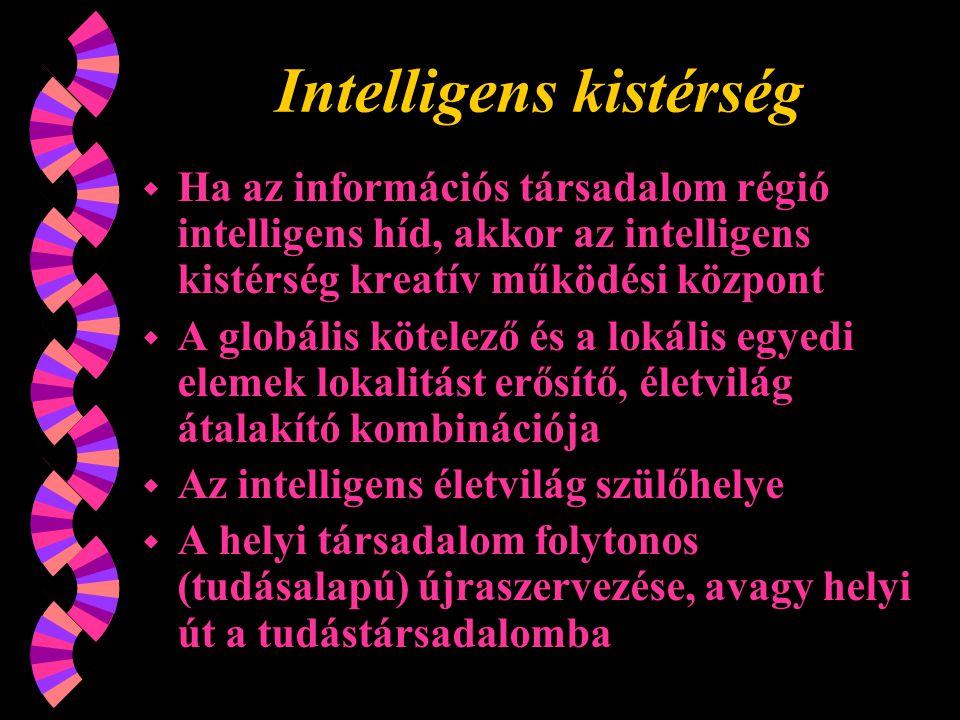 Intelligens kistérség