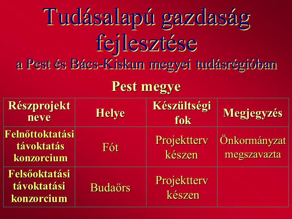 Tudásalapú gazdaság fejlesztése a Pest és Bács-Kiskun megyei tudásrégióban