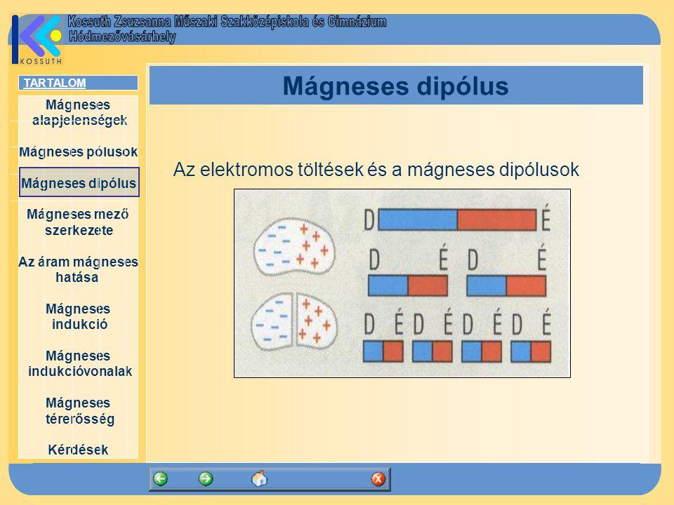 Mágneses dipólus Az elektromos töltések és a mágneses dipólusok